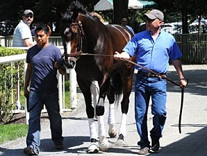Rachel Alexandra schools at Belmont Park on June 25, 2009.