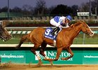 Shackleford's victory in the Clark was one of the highlights of the Churchill Downs Fall meet.