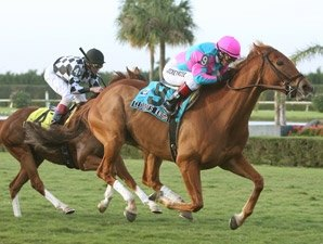 Cloudy's Knight Shines in W.L. McKnight