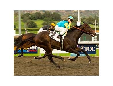 "Pioneerof the Nile overtakes Papa Clem to win the Robert Lewis Stakes. <br><a target=""blank"" href=""http://www.bloodhorse.com/horse-racing/photo-store?ref=http%3A%2F%2Fpictopia.com%2Fperl%2Fgal%3Fprovider_id%3D368%26ptp_photo_id%3D7694056%0D%0A%26ref%3Dstory"">Order This Photo</a>"