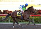 "Nicanor makes his stakes debut in the Dixie Stakes.<br><a target=""blank"" href=""http://www.bloodhorse.com/horse-racing/photo-store?ref=http%3A%2F%2Fpictopia.com%2Fperl%2Fgal%3Fprovider_id%3D368%26ptp_photo_id%3D7610203%26ref%3Dstory"">Order This Photo</a>"