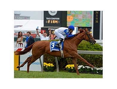 "Pianist won the Gallorette Stakes at Pimlico in May.<br><a target=""blank"" href=""http://photos.bloodhorse.com/AtTheRaces-1/at-the-races-2013/27257665_QgCqdh#!i=2519376616&k=dnngVDG"">Order This Photo</a>"