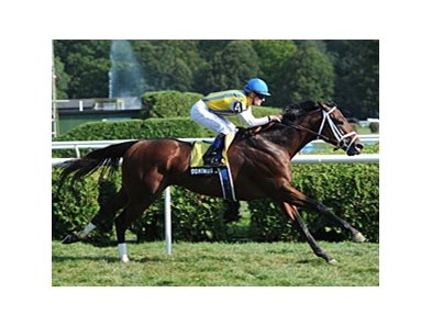 "Dominus won the Bernard Baruch Handicap on the turf at Saratoga.<br><a target=""blank"" href=""http://photos.bloodhorse.com/AtTheRaces-1/at-the-races-2012/22274956_jFd5jM#!i=2061185064&k=ZM57mdw"">Order This Photo</a>"