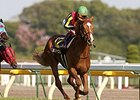 Orfevre wins the 2011 Two Thousand Guineas in Japan.
