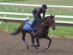 Preparations Continue for Haskell Contenders