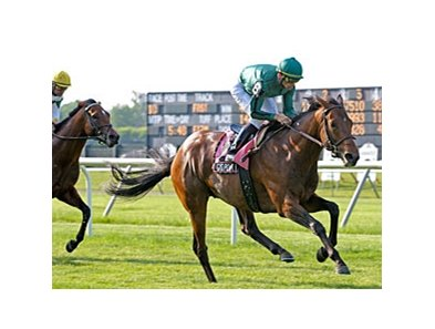 Gio Ponti was a two-length winner in the Hill Prince earlier this year at Belmont Park.