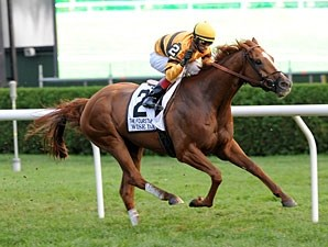 Wise Dan wins the 2012 Fourstardave.