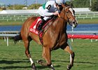 "Dynamic Holiday has won 4 in a row, including the Hercomesthebride Stakes (shown).<br><a target=""blank"" href=""http://www.bloodhorse.com/horse-racing/photo-store?ref=http%3A%2F%2Fpictopia.com%2Fperl%2Fgal%3Fprovider_id%3D368%26ptp_photo_id%3D9446693%26ref%3Dstory"">Order This Photo</a>"