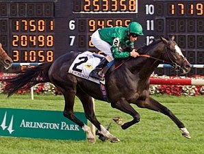 Arlington Million Winner Debussy Retired