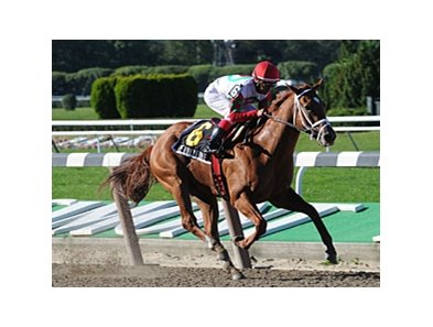 "D' Funnybone -- Throw out BC Juvenile and he's hard to fault; distance so-so<br><a target=""blank"" href=""http://www.bloodhorse.com/horse-racing/photo-store?ref=http%3A%2F%2Fpictopia.com%2Fperl%2Fgal%3Fprovider_id%3D368%26ptp_photo_id%3D8494175%26ref%3Dstory"">Order This Photo</a>"