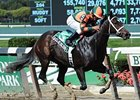"Believe You Can has won 3 in a row, including the Tempted Stakes.<br><a target=""blank"" href=""http://www.bloodhorse.com/horse-racing/photo-store?ref=http%3A%2F%2Fpictopia.com%2Fperl%2Fgal%3Fprovider_id%3D368%26ptp_photo_id%3D9688147%26ref%3Dstory"">Order This Photo</a>"