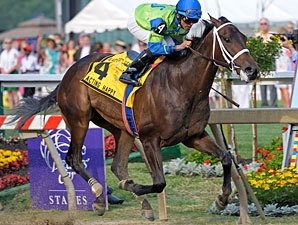 Acting Happy Pulls Black-Eyed Susan Upset