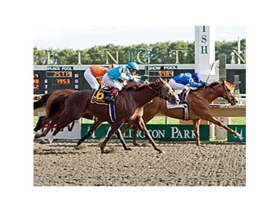 Gran Estreno outfinishes Giant Oak and Mad Flatter to repeat in the Washington Park Handicap.