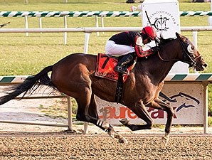 Stormin Monarcho wins the 2014 Richard W. Small Stakes.