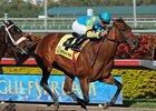 "Kays and Jays won the Hurricane Bertie on Feb 13.<br><a target=""blank"" href=""http://www.bloodhorse.com/horse-racing/photo-store?ref=http%3A%2F%2Fpictopia.com%2Fperl%2Fgal%3Fprovider_id%3D368%26ptp_photo_id%3D8792366%26ref%3Dstory"">Order This Photo</a>"