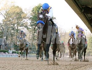 The Factor wins the 2011 Rebel Stakes.