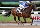 "Nicole H is the likely favorite for Saturday's Robert M. O'Malley Sprint Stakes.<br><a target=""blank"" href=""http://www.bloodhorse.com/horse-racing/photo-store?ref=http%3A%2F%2Fpictopia.com%2Fperl%2Fgal%3Fprovider_id%3D368%26ptp_photo_id%3D9311764%26ref%3Dstory"">Order This Photo</a>"