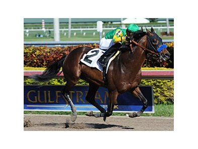 "Citrus Kid was a winner in his his first start since September of 2011.<br><a target=""blank"" href=""http://photos.bloodhorse.com/AtTheRaces-1/at-the-races-2012/22274956_jFd5jM#!i=2281934061&k=swSJBX7"">Order This Photo</a>"