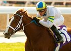 "Cambina seeks her third consecutive win in the Providencia Stakes.<br><a target=""blank"" href=""http://www.bloodhorse.com/horse-racing/photo-store?ref=http%3A%2F%2Fpictopia.com%2Fperl%2Fgal%3Fprovider_id%3D368%26ptp_photo_id%3D9416455%26ref%3Dstory"">Order This Photo</a>"
