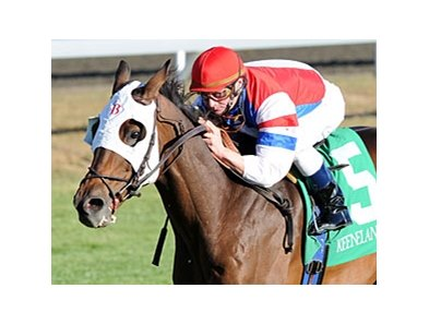 "Brass Hat<br><a target=""blank"" href=""http://www.bloodhorse.com/horse-racing/photo-store?ref=http%3A%2F%2Fpictopia.com%2Fperl%2Fgal%3Fprovider_id%3D368%26ptp_photo_id%3D9241662%26ref%3Dstory"">Order This Photo</a>"