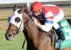 "Brass Hat will return to the dirt in the Clark.<br><a target=""blank"" href=""http://www.bloodhorse.com/horse-racing/photo-store?ref=http%3A%2F%2Fpictopia.com%2Fperl%2Fgal%3Fprovider_id%3D368%26ptp_photo_id%3D9241662%26ref%3Dstory"">Order This Photo</a>"