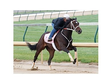 Believe You Can works towards the Kentucky Oaks.
