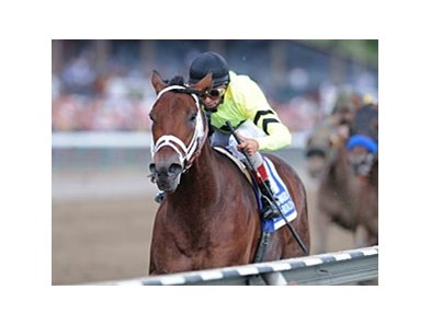 "Quality Road is back on track.<br><a target=""blank"" href=""http://www.bloodhorse.com/horse-racing/photo-store?ref=http%3A%2F%2Fpictopia.com%2Fperl%2Fgal%3Fprovider_id%3D368%26ptp_photo_id%3D9173763%26ref%3Dstory"">Order This Photo</a>"