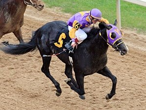 Rebel Contenders Show Up on Oaklawn Work Tab