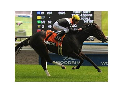 Marketing Mix' wins this year include the Nassau at Woodbine.