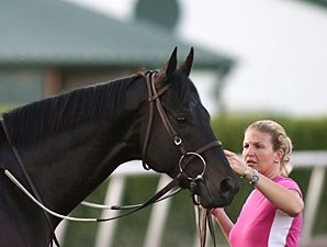 Einstein Sharp in Gulfstream Return