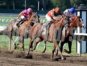 Coil finishes first, Shackledford second, and Ruler On Ice third in the 2011 Haskell Invitational.