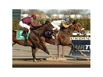 "Tale of Ekati<br><a target=""blank"" href=""http://www.bloodhorse.com/horse-racing/photo-store?ref=http%3A%2F%2Fpictopia.com%2Fperl%2Fgal%3Fprovider_id%3D368%26ptp_photo_id%3D4127359%26ref%3Dstory"">Order This Photo</a>"