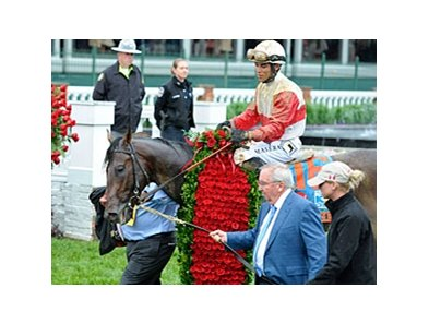 "Kentucky Derby winner Orb<br><a target=""blank"" href=""http://photos.bloodhorse.com/TripleCrown/2013-Triple-Crown/Kentucky-Derby-139/29213460_Rcqkd4#!i=2494210570&k=VTTHBwp"">Order This Photo</a>"
