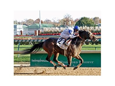 Neck 'n Neck rolls home to win the Ack Ack Handicap.