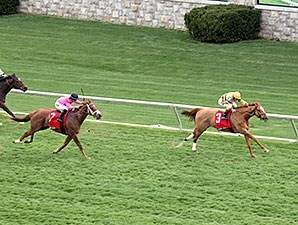 Wise Dan wins the 2014 Maker's 46 Mile.