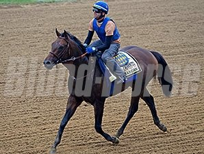 Bayern jogs at Pimlico May 15.