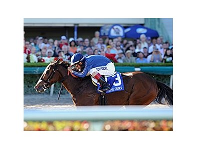 "Best Behavior is one of three for trainer Marty Wolfson in the Rampart Stakes.<br><a target=""blank"" href=""http://photos.bloodhorse.com/AtTheRaces-1/At-the-Races-2014/i-Fh22VZ9"">Order This Photo</a>"