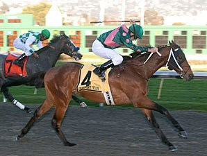 Silver Medallion wins the 2011 El Camino Real.