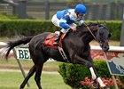 Woodbine Supporting Stakes Attract Stars