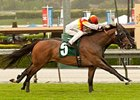 Bourbon Bay won the 2012 San Luis Rey by a head over Slim Shadey.