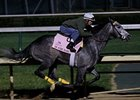 On Fire Baby worked seven furlongs in 1:27 at Churchill Downs April 27.