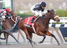 "Lovely Lil won the Go For Wand Handicap in November.<br><a target=""blank"" href=""http://www.bloodhorse.com/horse-racing/photo-store?ref=http%3A%2F%2Fpictopia.com%2Fperl%2Fgal%3Fprovider_id%3D368%26ptp_photo_id%3D9753555%26ref%3Dstory"">Order This Photo</a>"