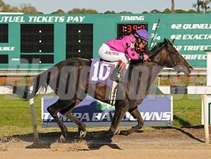 Diva Delite wins the 2010 Suncoast.