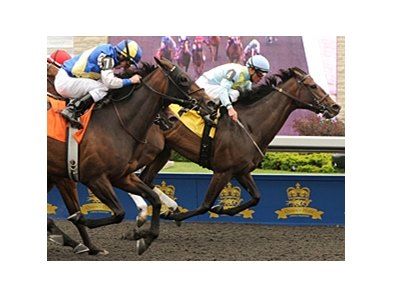 Stars to Shine won the Trillium Stakes at Woodbine June 24.