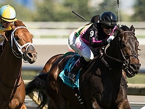 Stacked Deck wins the 2014 Charlie Barley Stakes.