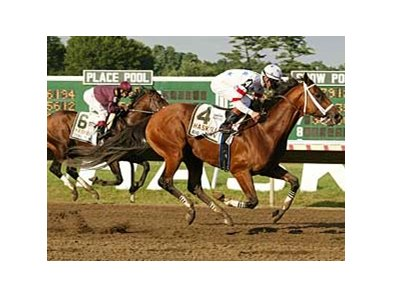 Big Brown will not meet Curlin in the Woodward or the Jockey Club Gold Cup according to Mike Iavarone.