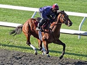 Caleb's Posse works at Keeneland, October 15, 2011.