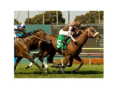 "Global Hunter won the American Handicap at Hollywood Park, but his victory turned to sadness when the grade I winner pulled up lame.<br><a target=""blank"" href=""http://www.bloodhorse.com/horse-racing/photo-store?ref=http%3A%2F%2Fpictopia.com%2Fperl%2Fgal%3Fprovider_id%3D368%26ptp_photo_id%3D9095827%26ref%3Dstory"">Order This Photo</a>"