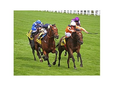 "Danedream (right) outfinishes Nathaniel to win the King George VI & Queen Elizabeth Stakes.<br><a target=""blank"" href=""http://photos.bloodhorse.com/AtTheRaces-1/at-the-races-2012/22274956_jFd5jM#!i=1978628892&k=PNMW4Cz"">Order This Photo</a>"
