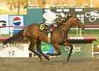 "Country Star is trying to make it to the Breeders' Cup.<br><a target=""blank"" href=""http://www.bloodhorse.com/horse-racing/photo-store?ref=http%3A%2F%2Fpictopia.com%2Fperl%2Fgal%3Fprovider_id%3D368%26ptp_photo_id%3D3044656%26ref%3Dstory"">Order This Photo</a>"